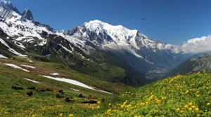 Tour du Mont Blanc Trek - August 2022